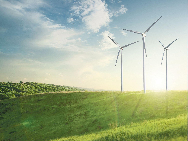 Windkrafträder auf einer Wiese. Thema: Stromgestehungskosten von Erneuerbaren Energien