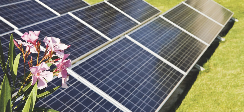 Solarzellen. Die Kosten der Speichermöglichkeiten von Strom variieren stark